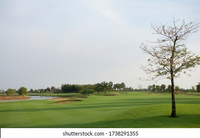Fairway golf course. Rough and fairway. Scenic view golf course. Morning sunlight on fairway golf.