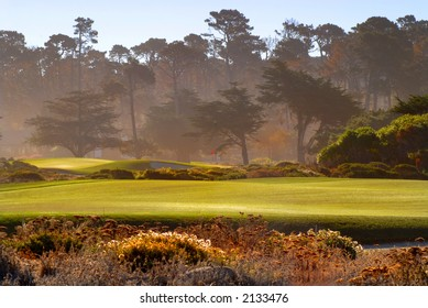 Fairway view of golf course in Pebble Beach California bathed in sunlight