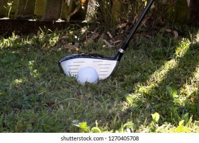Fairway wood golf club in the rough golf course grass