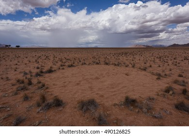 Fairy Circle under a stormy sky near Sesriem in Namibia