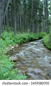 Fairy Creek in the Bridger Mountains of Montana