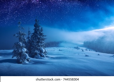 Fairy forest covered with snow in a moon light. Milky way in a starry sky. Christmas and New Year winter night.