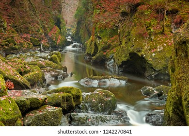 The Fairy Glen at Betws-y-Coed ,Snowdonia,Wales