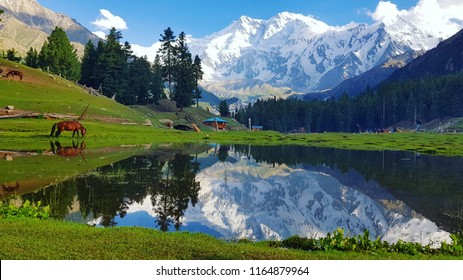 Fairy Meadows is a grassland near one of the base camp sites of the Nanga Parbat, located in Diamer District, Gilgit-Baltistan, Pakistan