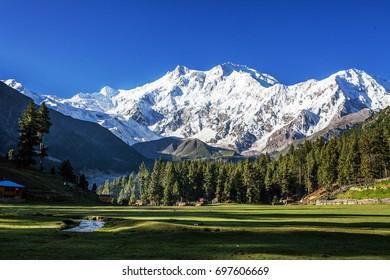 Fairy Meadows / Pakistan