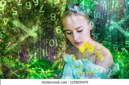 Fairy in numerology world