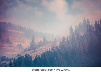 Fairy tale landscape in pink violet purple blue shades. The Carpathians Mountains. Bukovel, Ukraine. Ideal background for mysterious or romantic styled illustrations or collages.