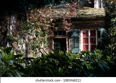 Fairytale or gnome house deep in garden with wooden doors and windows and lot of overgrown plants.