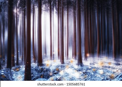 Fairy-tale light in the winter enchanted forest with fireflies in the foreground