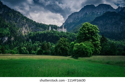 The fairytale Neuschwanstein Castle from afar with a meadow and trees in the foreground