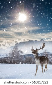 fairy-tale picture with deer in heavy snowfall