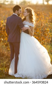 Fairytale romantic couple of newlyweds hugging at sunset in vineyard field wth bushes surrounding them
