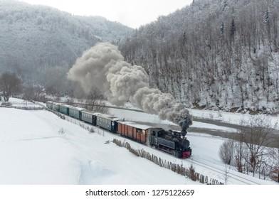 Fairytale Steam Train  - Mocanita
