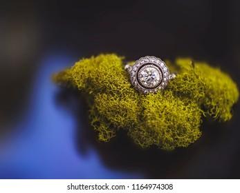 Fairytale Wedding Rings Stock Photo Edit Now 1164974323 Shutterstock