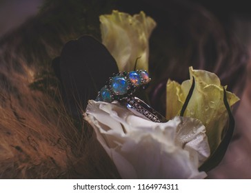 Fairytale Wedding Rings Stock Photo Edit Now 1164974317 Shutterstock