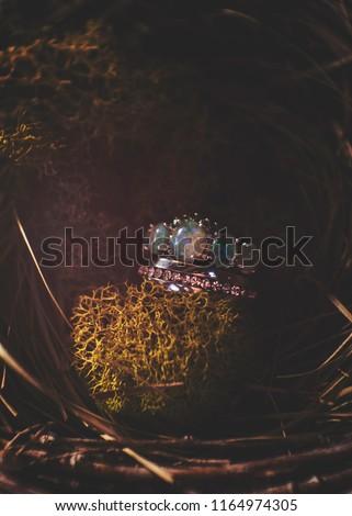 Fairytale Wedding Rings Stock Photo Edit Now 1164974305 Shutterstock