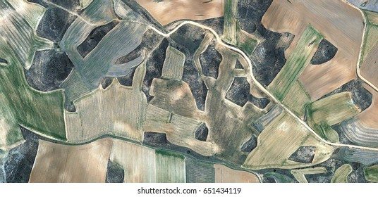 faithful friend,allegory, tribute to Picasso abstract photography of the Spain fields from the air, aerial view, representation of human labor camps, abstract, cubism, abstract naturalism,