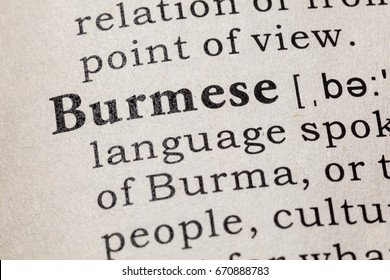 Fake dictionary dictionary definition word mentor stock photo fake dictionary dictionary definition of the word burmese including key descriptive words malvernweather Image collections