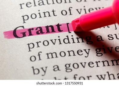 Fake Dictionary, Dictionary definition of the word grant. including key descriptive words.