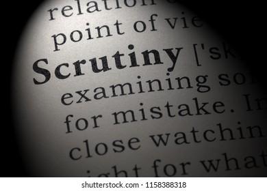 Fake Dictionary, Dictionary definition of the word scrutiny. including key descriptive words.