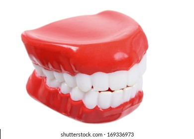 Fake Teeth on White Background