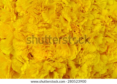 Fake Yellow Flowers Texture Background Stock Photo Edit Now
