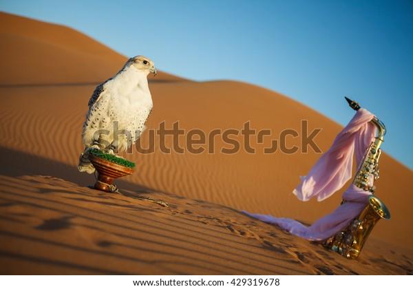 Falcon Desert Golden Saxophone Pink Scarf Stock Photo (Edit Now