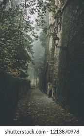 fall at the ancient city- autumn season specific - fall season dark mood filtered look