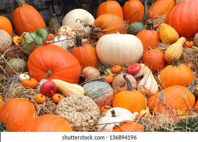 Fall arrangement consisting of several colorful varieties of pumpkins and squash on grass displayed at local farmer's market.
