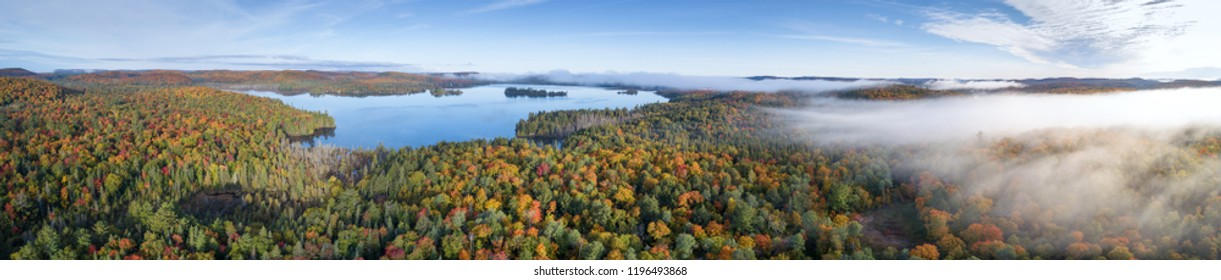 Fall Autumn Forest Colors From Above