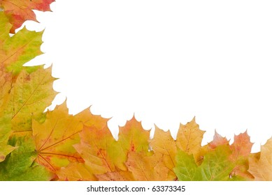 Fall autumn leaves on white background - isolated