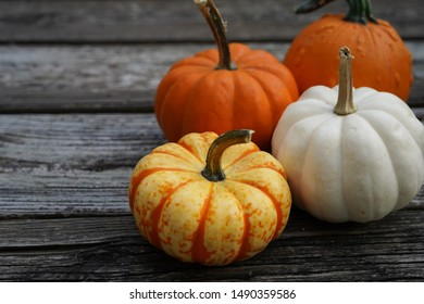 Fall Autumn pumpkins background with copy space, selective focus
