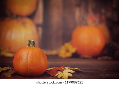Fall Autumn Pumpkins with leaves on Wood Surface for Thanksgiving