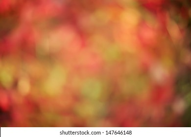 fall background of red and orange with bokeh
