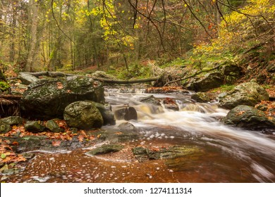 Fall in the belgian ardennes