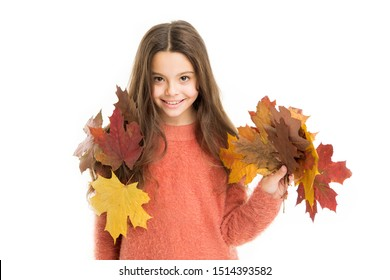 fall bouquet. fallen leaves in autumn nature beauty. school season. warm clothes fashion. happy little child isolated on white. girl with maple leaf. smiling girl in autumn sweater. weather forecast.