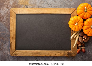 Fall chalkboard copy space with pumpkins, nuts, wheat
