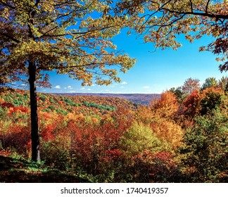 Fall color in Alleghany State Park in Western New York State