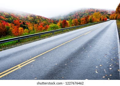 Fall color along the Highland Scenic Highway, Route 150, National Scenic Byway, Pocahontas County, West Virginia, USA