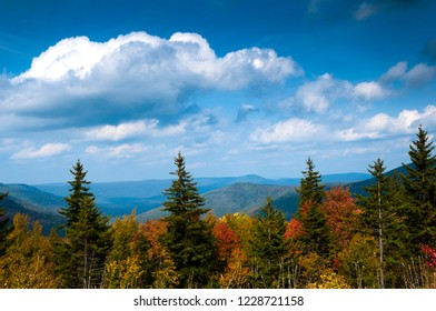Fall color along the Highland Scenic Highway, National Scenic Byway, Pocahontas County, West Virginia, USA
