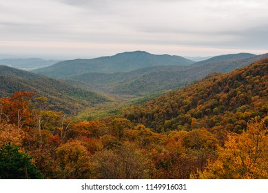Fall color and Blue Ridge Mountains view from Skyline Drive in Shenandoah National Park, Virginia