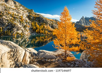 Fall color in the Enchantments, Washington, USA.