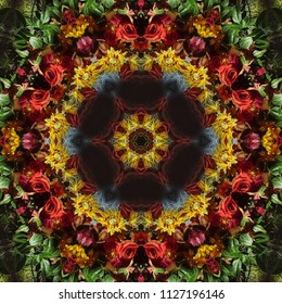 Fall Color Flower Kaleidoscope