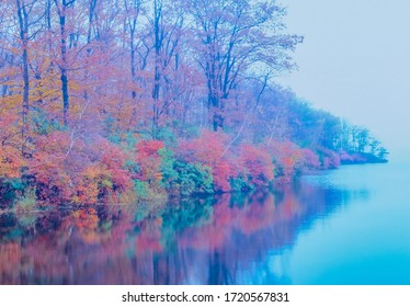 Fall color of the foggy forest is vividly reflected in Lake Welch  in Harriman State Park, in the Hudson River Valley of New York, USA.