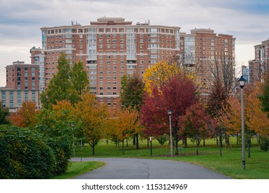 Fall color and modern buildings in Alexandria, Virginia