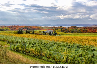 Fall color in Old Mission Peninsula