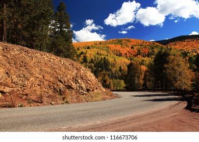 Fall Color in Santa Fe, NM