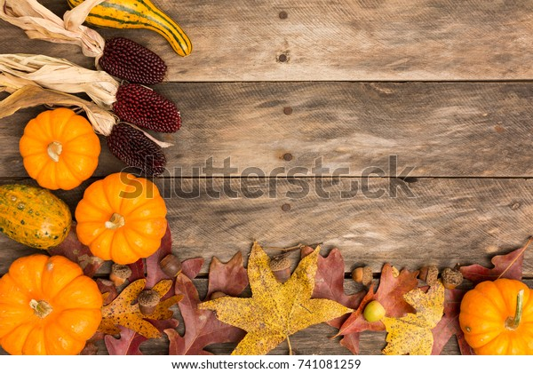 fall color wood background pumpkins gourds leaves