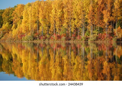 Fall Colored Trees reflecting in Water