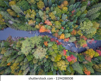 Fall Colors From Above